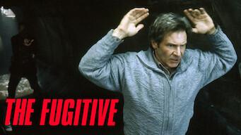 El fugitivo (1993)