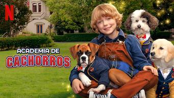 Academia de cachorros (2020)